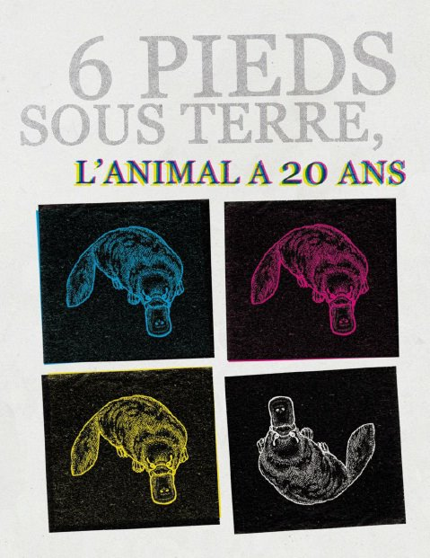 6 pieds sous terre : l'animal a 20 ans img1